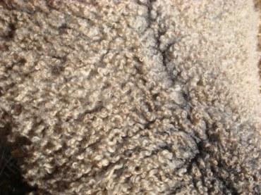 River Fleece